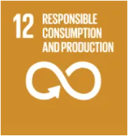 Sustainable Development Goal 12 van de Verenigde Naties: Verantwoorde productie met OEE